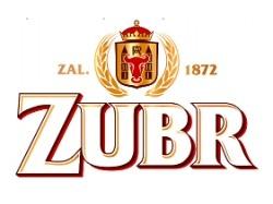 logo-zubr-male