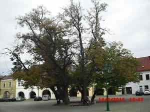orez-stromu-img
