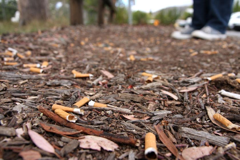 Cigarety na dětská hřiště nepatří, radní jim chtějí dát stopku vyhláškou