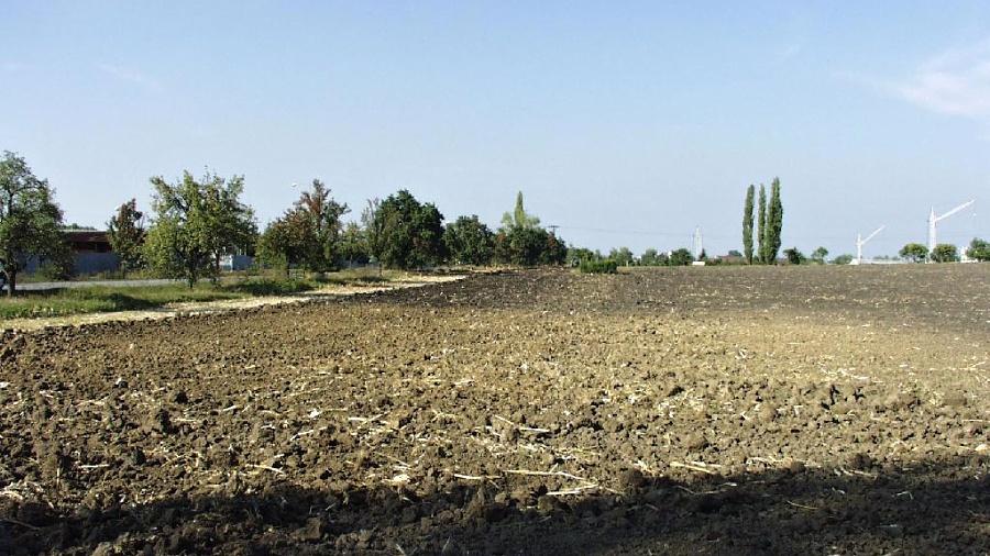 V Újezdci vznikne ze suchého poldru mokřad, chybět nebudou ani vodní rostliny