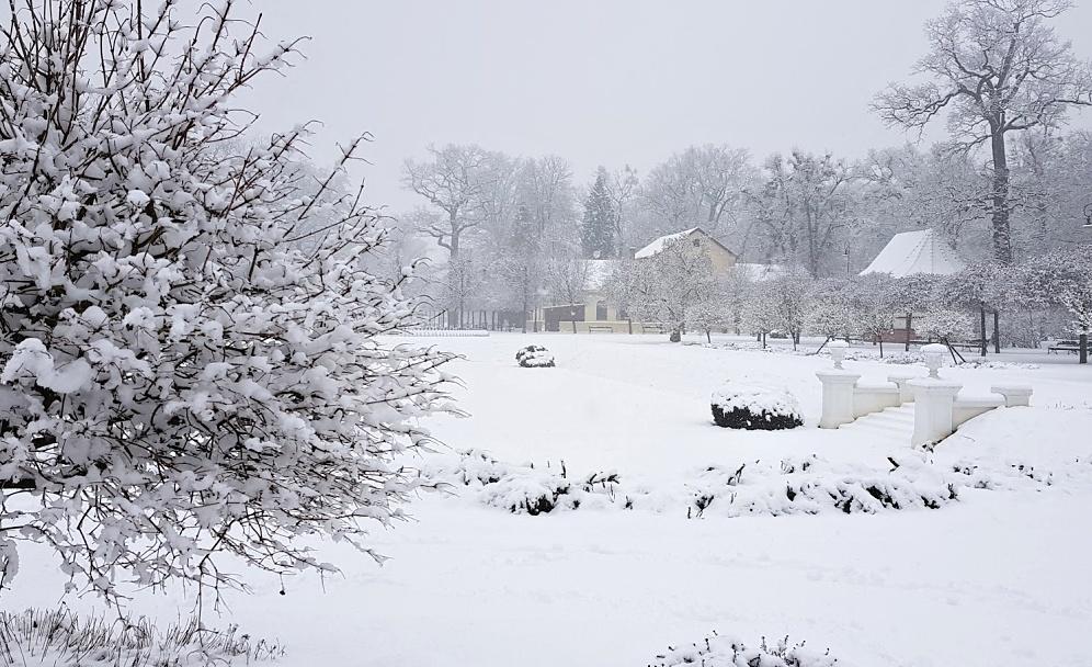 Těžký sníh láme větve. Uzavřen je opět park Michalov i městský hřbitov