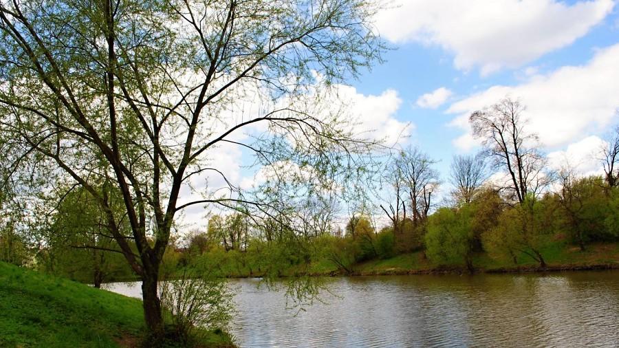 Rybníky v Předmostí by mohly dostat hezčí tvář, změnit se má i jejich okolí
