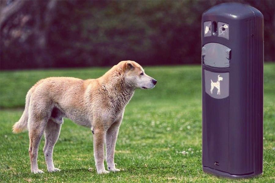 V ulicích Přerova přibude pět košů na psí exkrementy. Pokud se osvědčí, město plánuje zřídit další